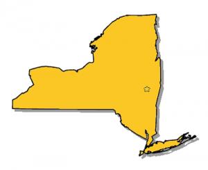 NY Taxi Ins.